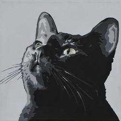 Black Cat - Slade Roberts Studio