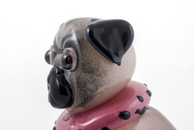 Mazzy the Pug