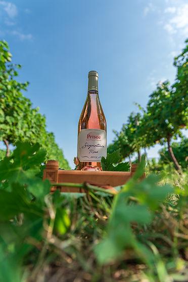 Prisoe Wine (21).jpg