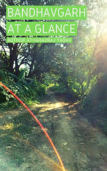 Bandhavgarh At a Glance | AtharavRaj Yadav