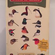 Aves Comunes de la Ciudad de México (segunda edición)