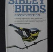 """""""Sibley"""""""