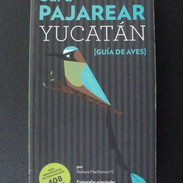 Sal a pajarear Yucatán
