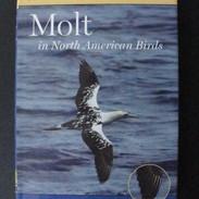 Molt in North American Birds