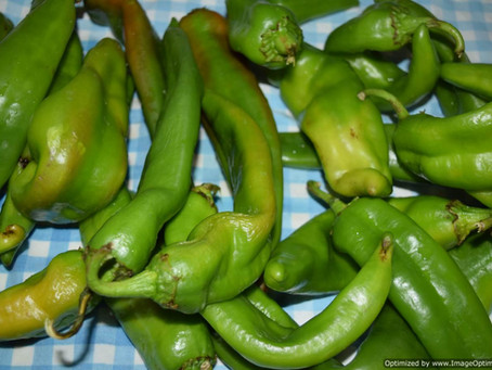 Hatch Chiles & How to Roast Them