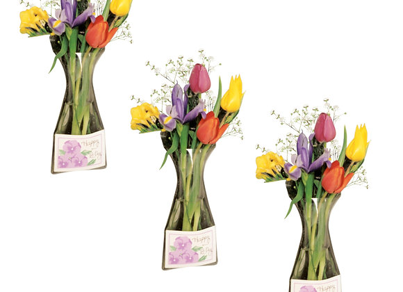 Window Vase Gift Card Vase Collection - 3 Pack