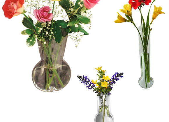 Window Vase Bulb-Shaped Vase Collection - 3 Styles!