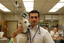 Mark Acierno MBA, DVM.jpg