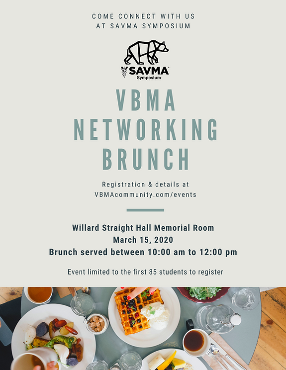SAVMA Brunch flyer image.png