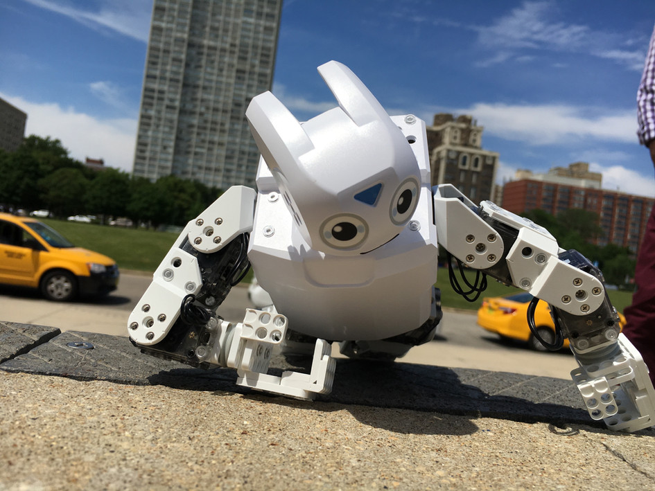 Robot Revolution (exhibit)