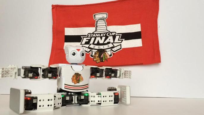 Blackhawks Stanley Cup Playoffs 2015