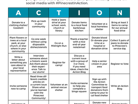 PINECREST IN ACTION - Action Bingo!