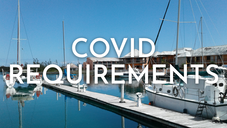 covid requirements@1x.png