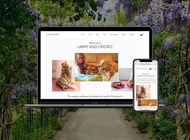 Book Launch/Gallery Custom Web Design
