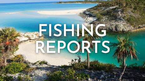 FISHING REPORTS@1x.png