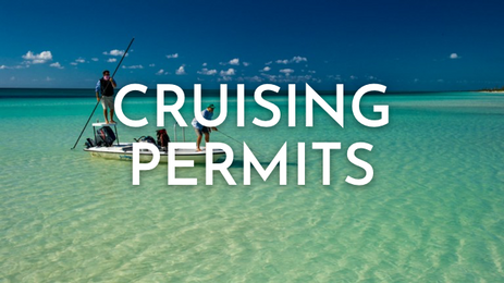 cruising permits@1x.png