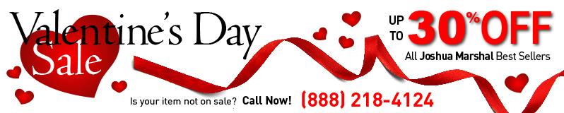 Web Banner Valentines Day 2