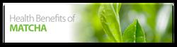 Aiya web banner