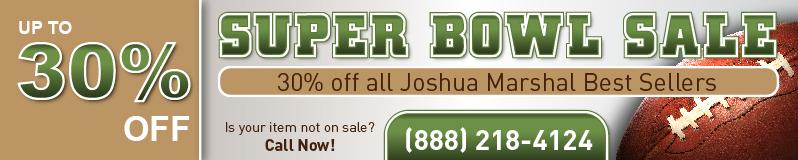 Web Banner Super Bowl 1