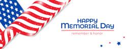 American-Flag-Celebrate-MD5-4-8-21-outli