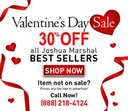 Web Banner Valentines Day 1