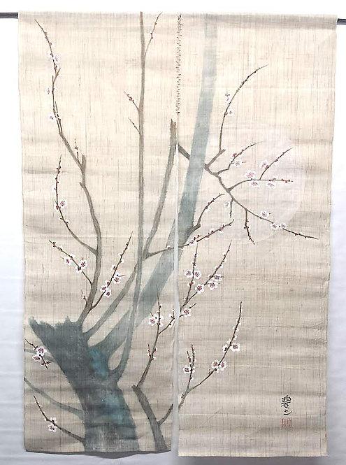 tende noren giapponesi