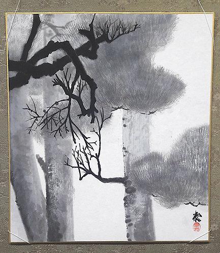 "Shikishi ""MORNING LIGHT 朝の光"""