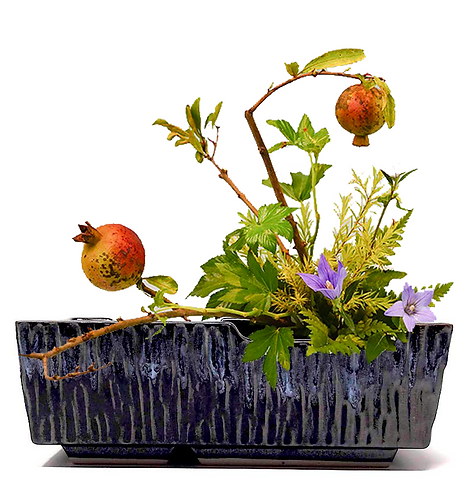 vasi giapponesi  ikebana