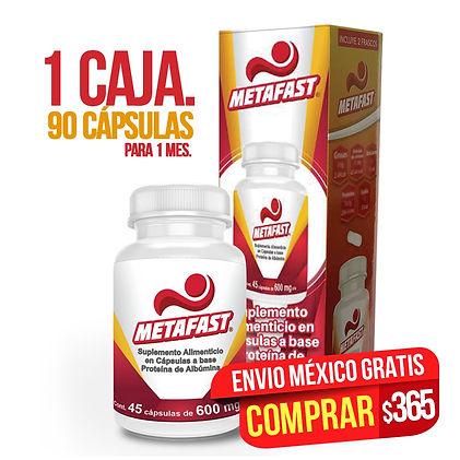 METAFAST_1.jpg