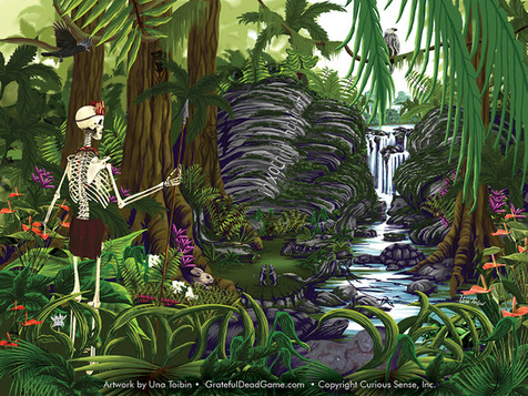 Rainforest Benefits
