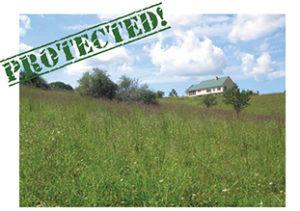 20-acres-of-open-grassland-web-300x211.j
