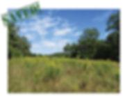 Prince-William-County-web-300x230.jpg