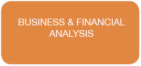 Business & Financial Analysis