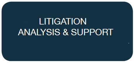 Litigation Analysis & Support