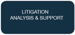 Litigation Analysis & Support