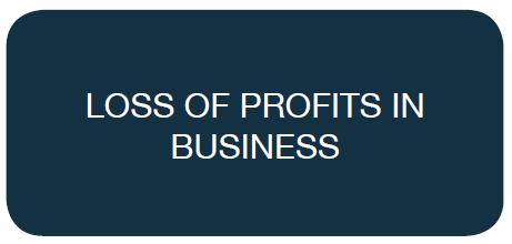 Loss of Profits in Business