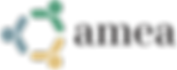 AMEA-logo-web.jpeg.png
