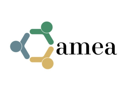 Africa Turnaround joins AMEA!