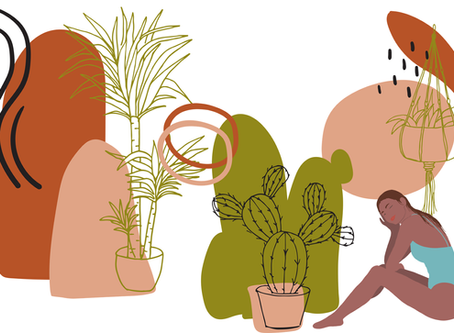 Water Your Plants, Water Yourself: Self-Care Lessons from a Plant Parent