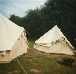 glamp forest