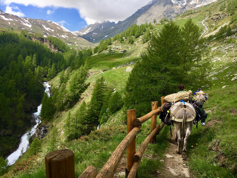 Alta via n°2 Asini trekking