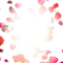 IMG_7010_edited_edited_edited.jpg