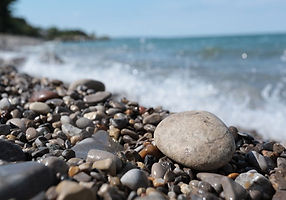 a-michigan-petoskey-stone-a.jpg