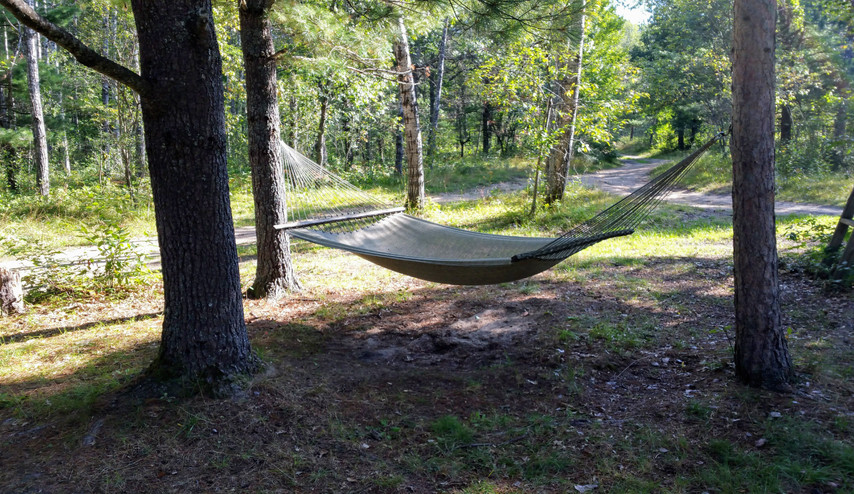 cabin hammock.jpg