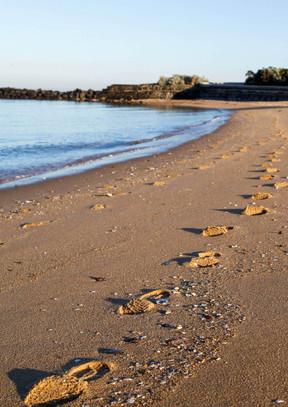 footprints-web.jpeg