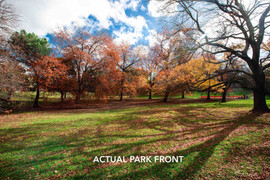 parkfront-mms.jpeg