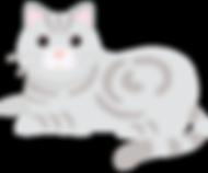 猫イラ1.png