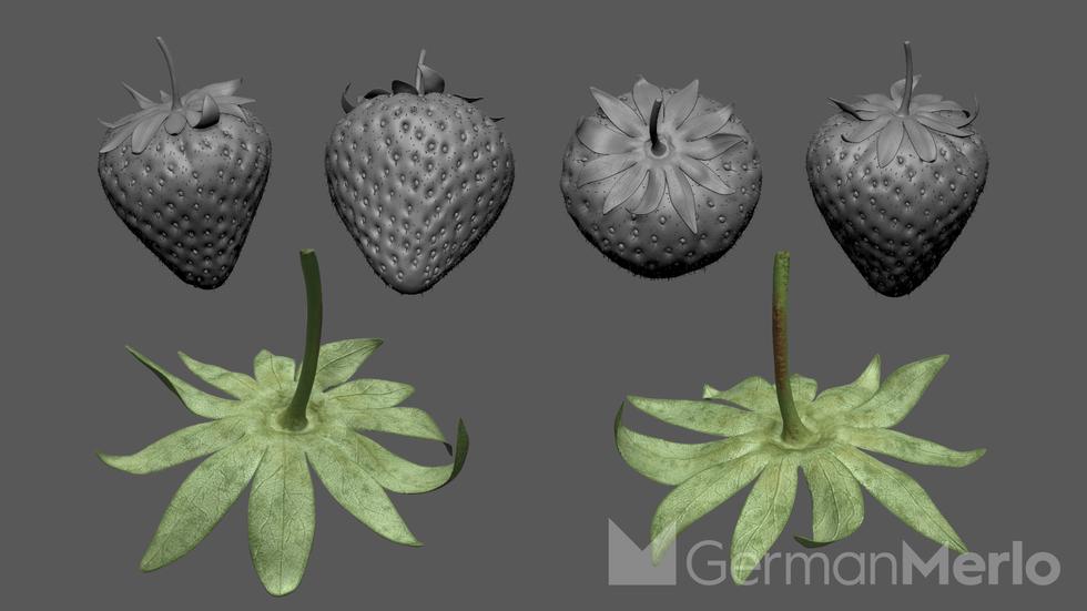 3D strawberries german merlo.png