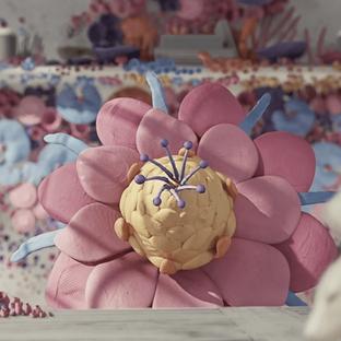 sonos flowers animation german merlo.png