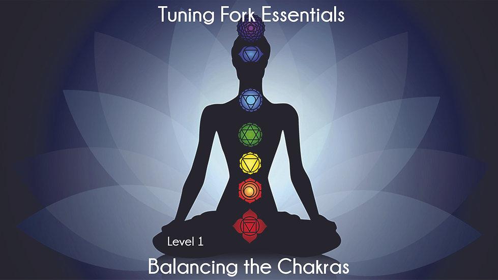 Infinite Energy Method: Balancing the Chakras - 2 Day Course